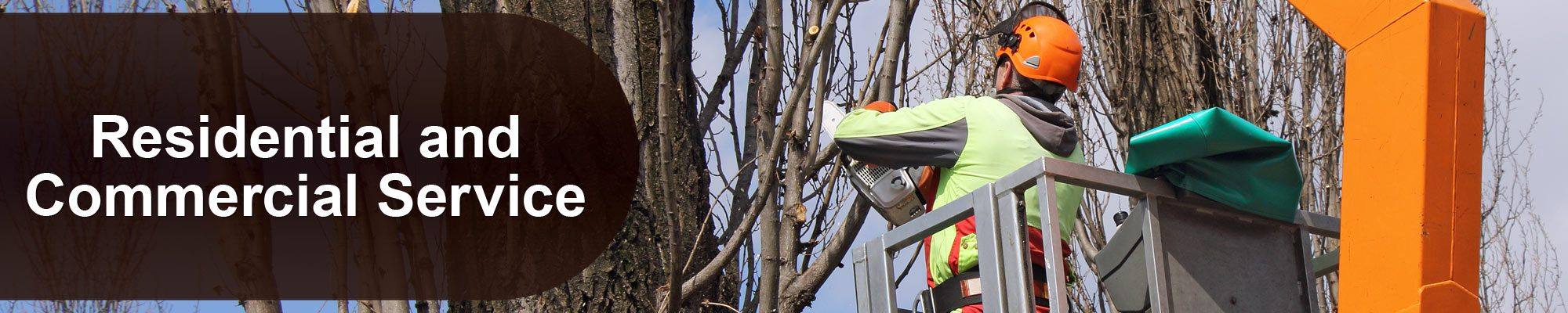 tree trimming new jersey