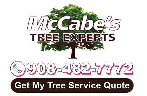 new jersey tree service