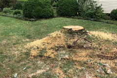 stump-removal-topsoil-grass-seed-hay-belle-mead-nj-001