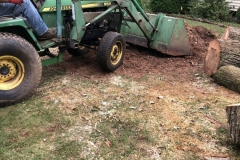stump-removal-topsoil-grass-seed-hay-belle-mead-nj-002