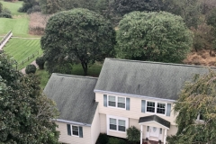 Tree Pruning and Shaping in Hillsborough, NJ