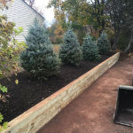 Retaining Wall and Blue Spruce Trees in Hillsborough, NJ