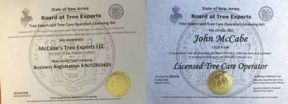 License and Business Registration Certificates