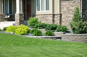 shrub services new jersey