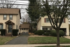 spruce-tree-and-stump-removal-somerville-nj-005