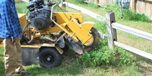 stump removal new jersey